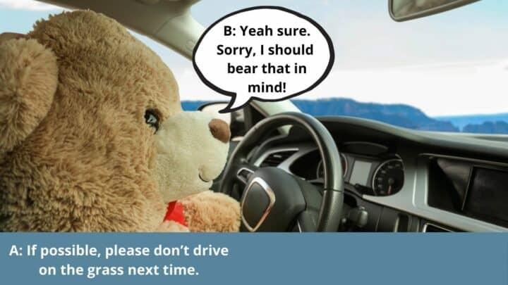 Bear That in Mind Variation