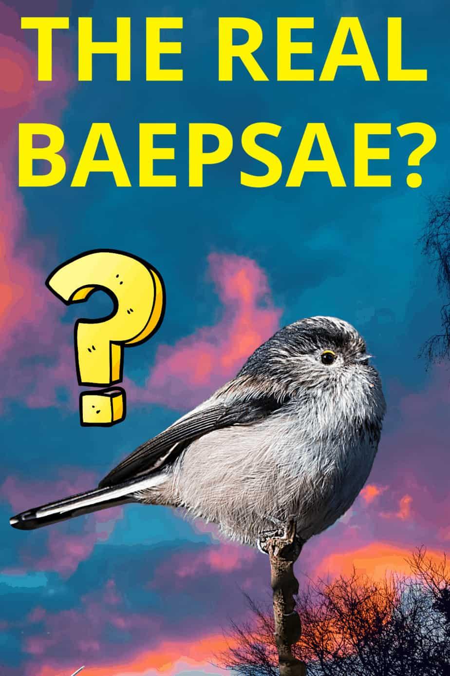 The Korean Crow Tit (Baepsae)