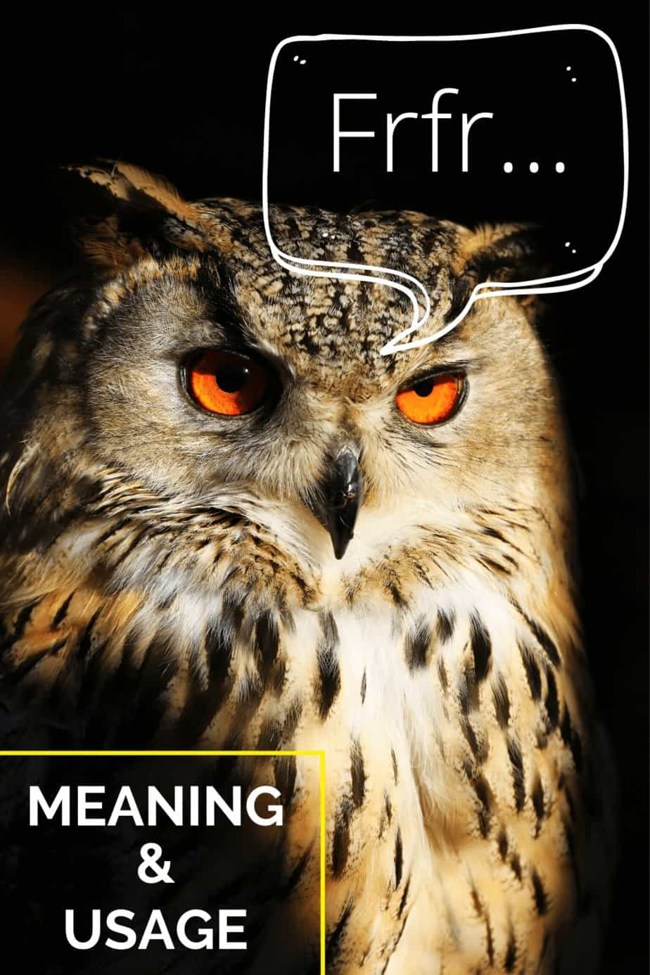Frfr Meaning & Usage