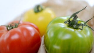 Difference between Tomate and Jitomate