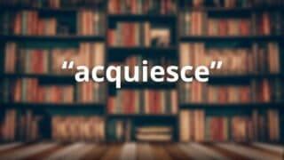 Acquiesce in a Sentence